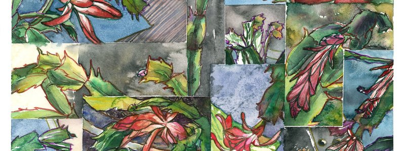 The Reach / Christmas Cactus Collage