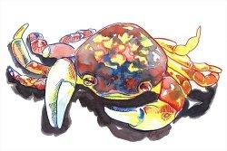 inktober crab