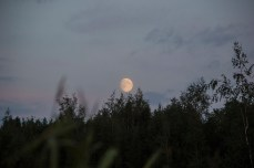 moon_0148p