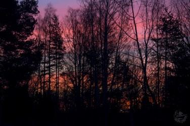 sunrise_0002p