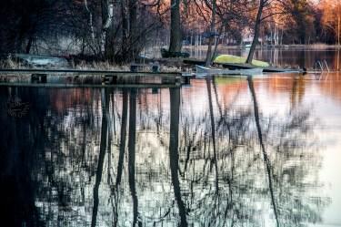 reflection_0036p