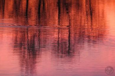 sunset_2466p