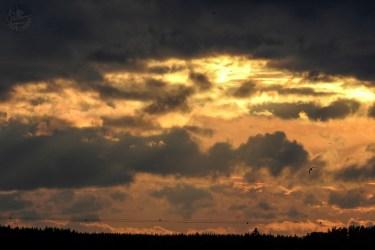 kelt_sunset5314p