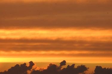 5sunset_pilvet_linnut6108p