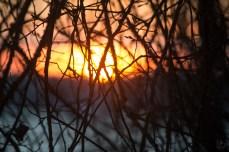 sunrise_0102p