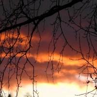 March Sunset / Maaliskuun auringonlasku / 2