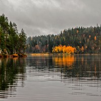 Water Reflects / Vesi heijastaa / WPC