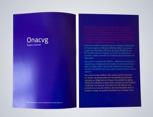 rapport_activite-01-a