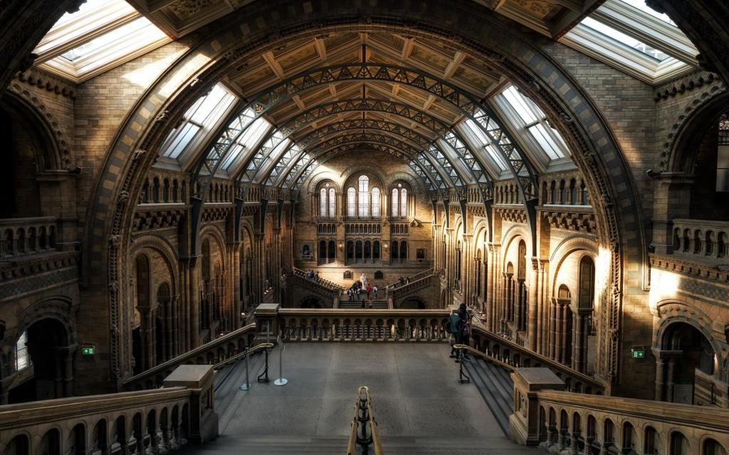 Museum Photo Claudio Testa - Natural History Museum London