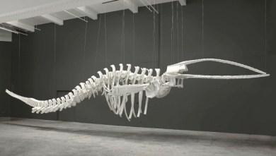 Cetology , 2002 Brian Jungen
