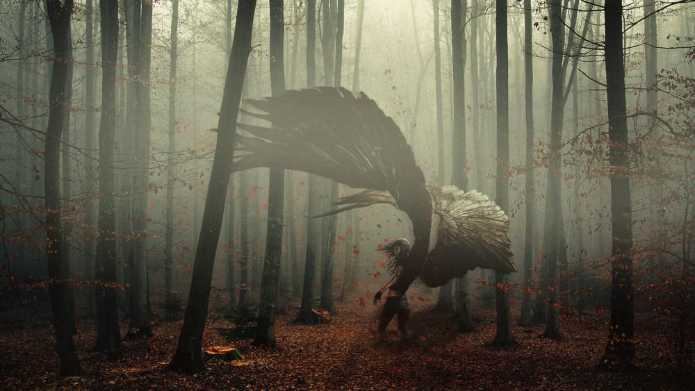 The Nature Of Angel by Domenico Sellaro