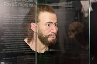 Rekonstrukce podoby muže z oppida na Závisti