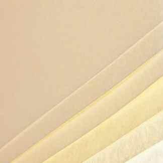 Бумага с имитацией пергамента Pergamon 230 ghiaccio А4 (21х29,7 см) 230 г/м.кв. Fabriano Италия
