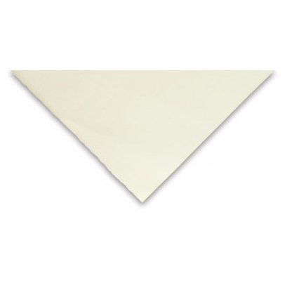 55870200 Бумага для сухих и влажных техник Accademia 70х100 см 200 г/м.кв. Fabriano Италия