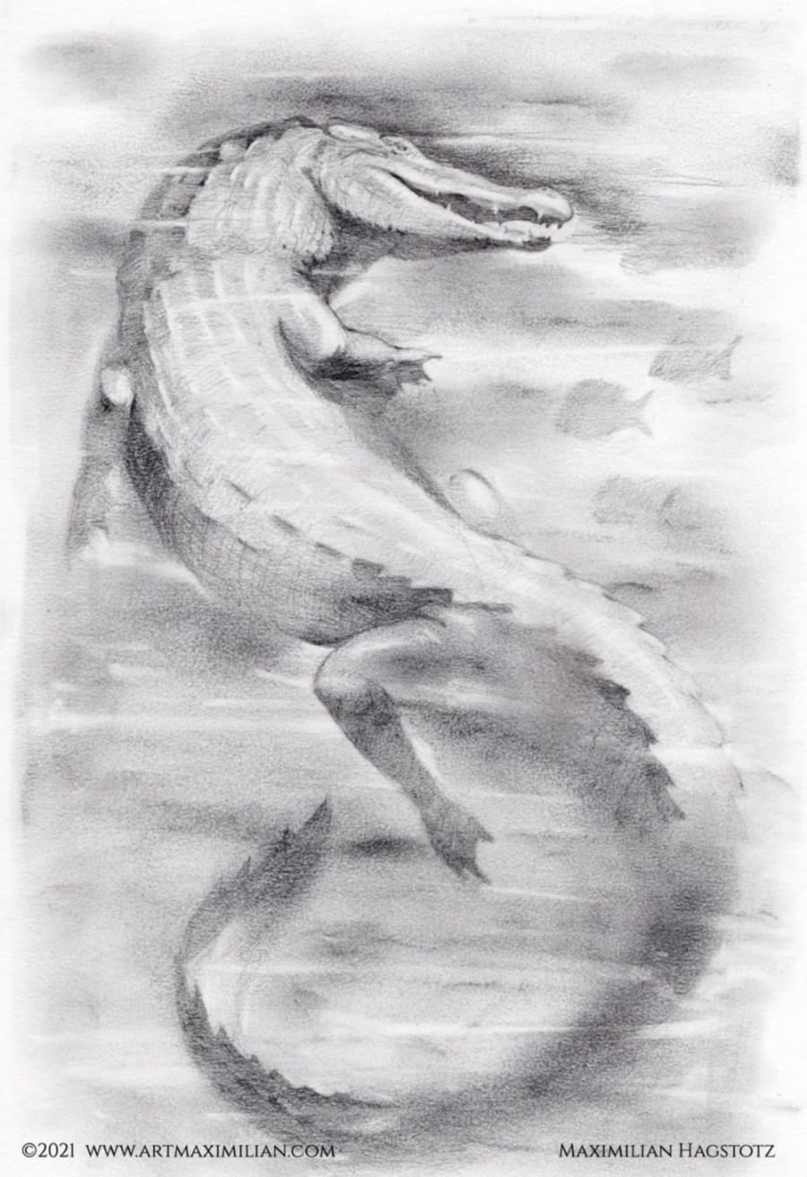 Krok Krokodil zerfetzt Knochen Opulent individuell fantasievoll Maximilian Hagstotz Kunstwerk Zähne Leder haut Skizze