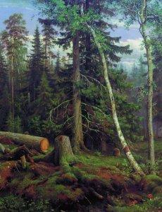Репродукция картины Шишкина «Лесная порубка»