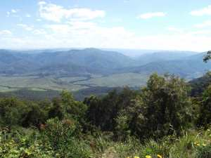 Pioneer Lookout Thunderbolts Way NSW