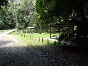 wilson-river-picnic-area
