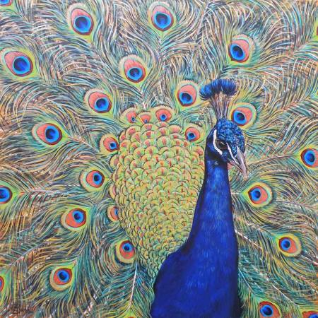 Original Animal Painting by Leigh Banks | Realism Art on Canvas | Peacock
