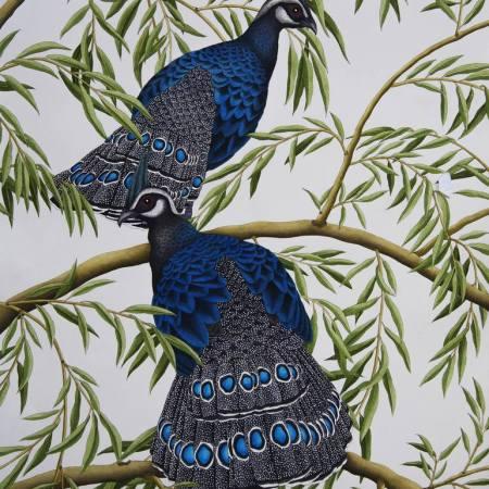 Original Botanic Painting by Bella Harvey | Figurative Art on Paper | Palawan peacock-pheasants
