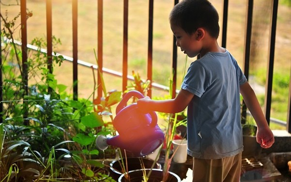 6  Ways to Make Your Garden Great for Your Kids