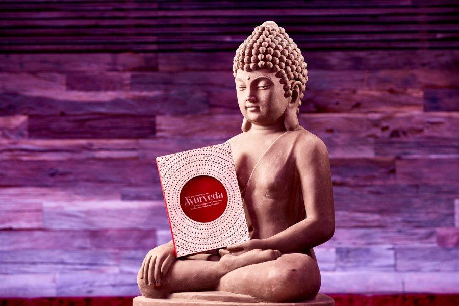 Einfache und gesunde Lebensrezepte im Ayurveda Kochbuch.