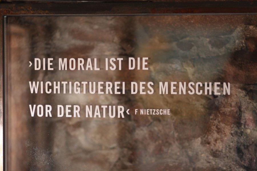 Nietzsche & Natur