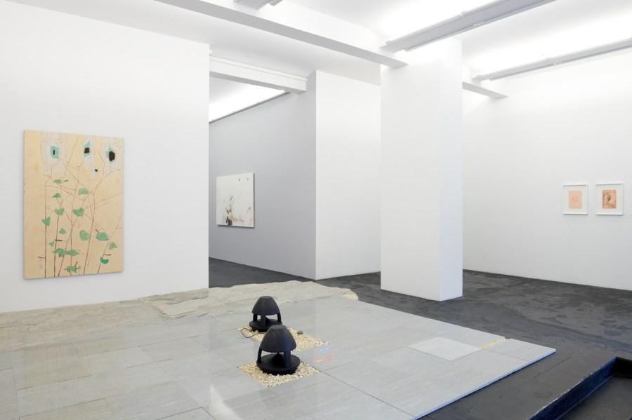 FUGAZZA & MIRZA »Antidotes and their Counterparts« Ausstellungsansicht Häusler Contemporary Zürich