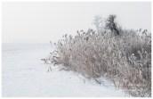 Gassy - Konstancin Jeziorna