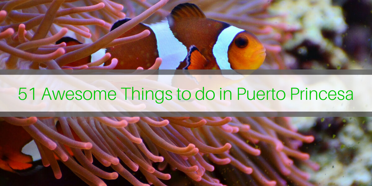 51 Awesome Things to do in Puerto Princesa