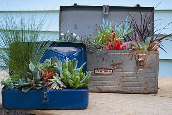 metal_lunchbox_gardens