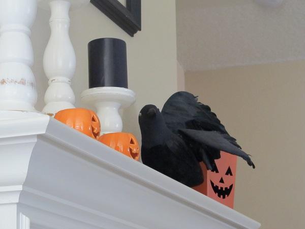 crow_fall2014