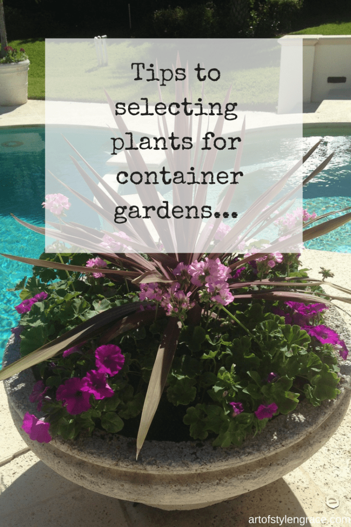 Selecting plants for container gardens