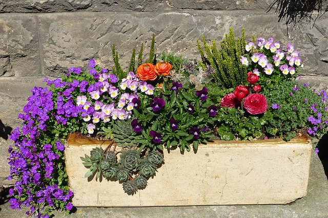 tips for container gardens