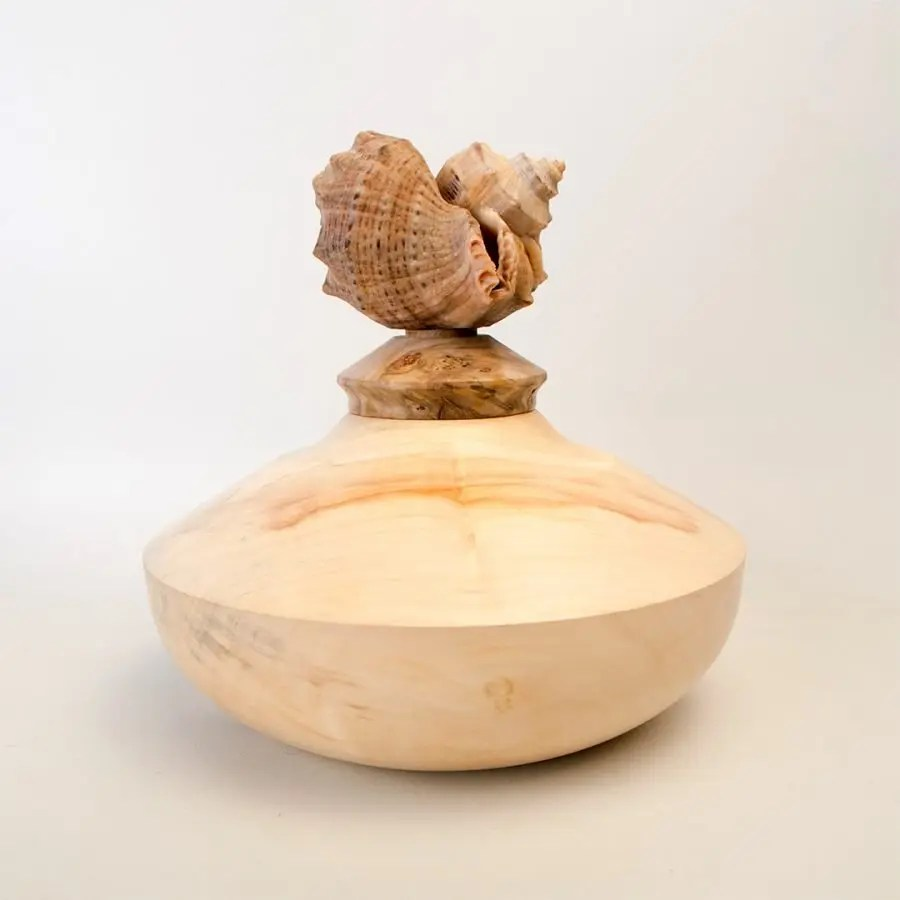 Wood turned maple wood hollow form with a sea shell lid.