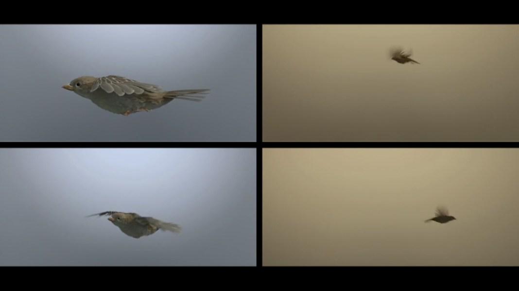 BirdPeople_BUF_VFX