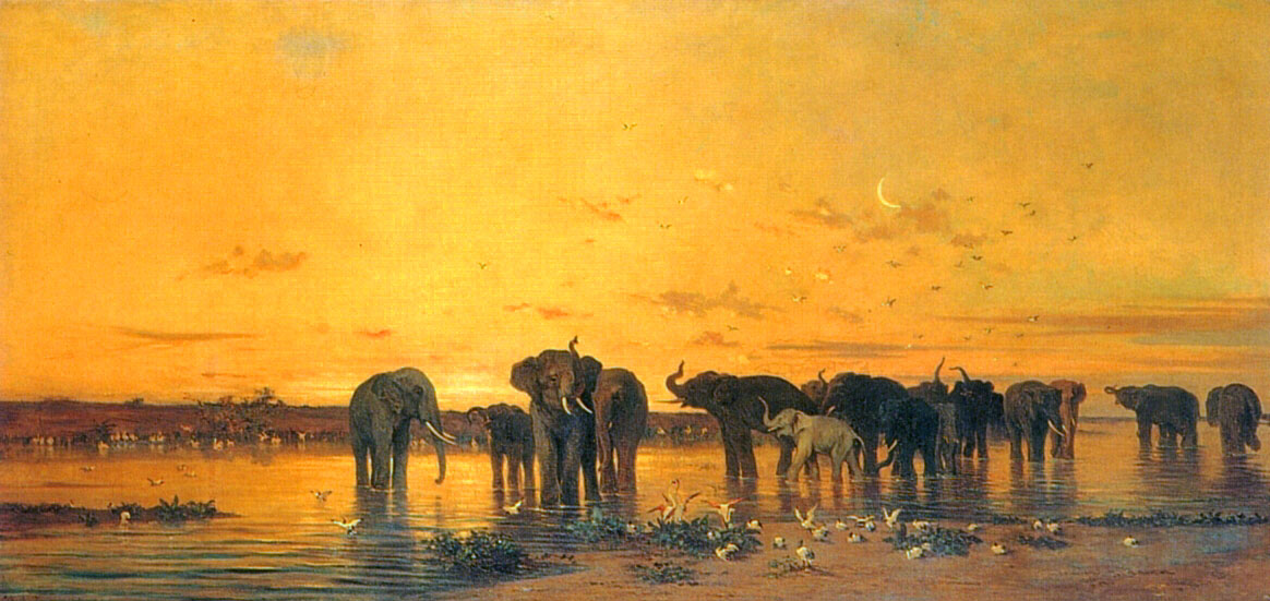 African Elephants by Charles de Tournemine