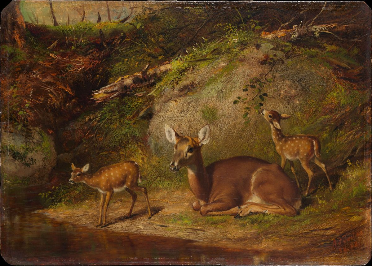 Doe and Two Fawns by Arthur Fitzwilliam Tait