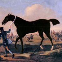 The Duke Of Rutland's Bonny Black Held By A Groom At Newmarket by John Wootton