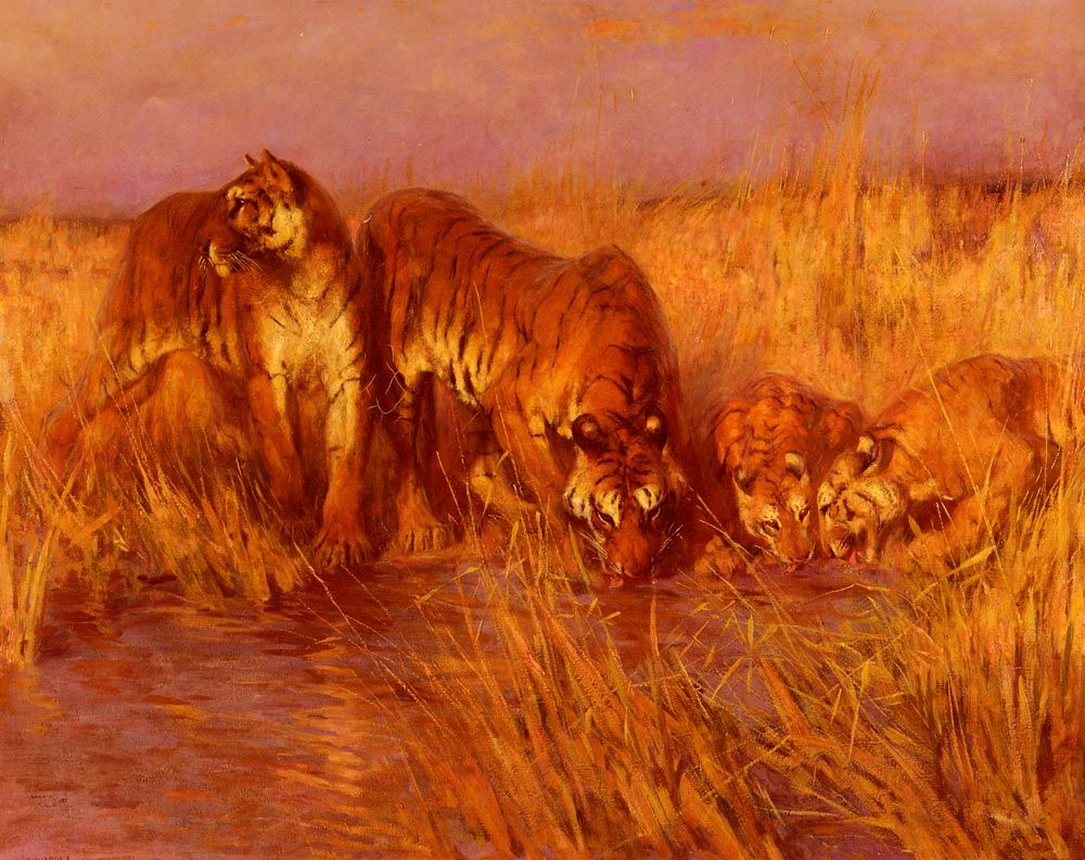 The Tiger Pool by Arthur Wardle