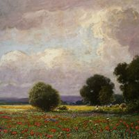 The Poppy Field by Ignac Ujvary