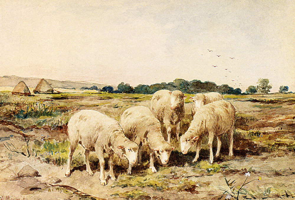 Grazing Sheep by Anton Mauve