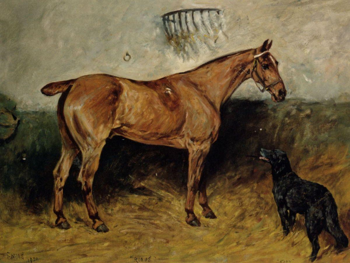 Rufus by John Emms