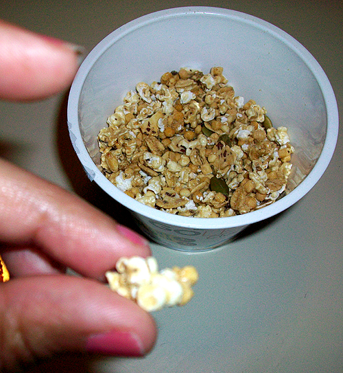 A Cluster from Kashi Go Lean Clusters Cereal - Vanilla Pepita