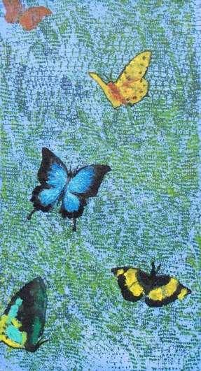 Rainforest Butterflies by Val Coventry