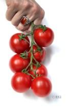 © ALAGU - Tomatoes