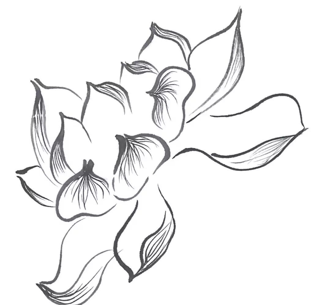 How to Draw a Lotus 2