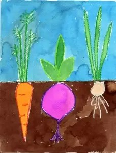 Vegetables-in-ground 700