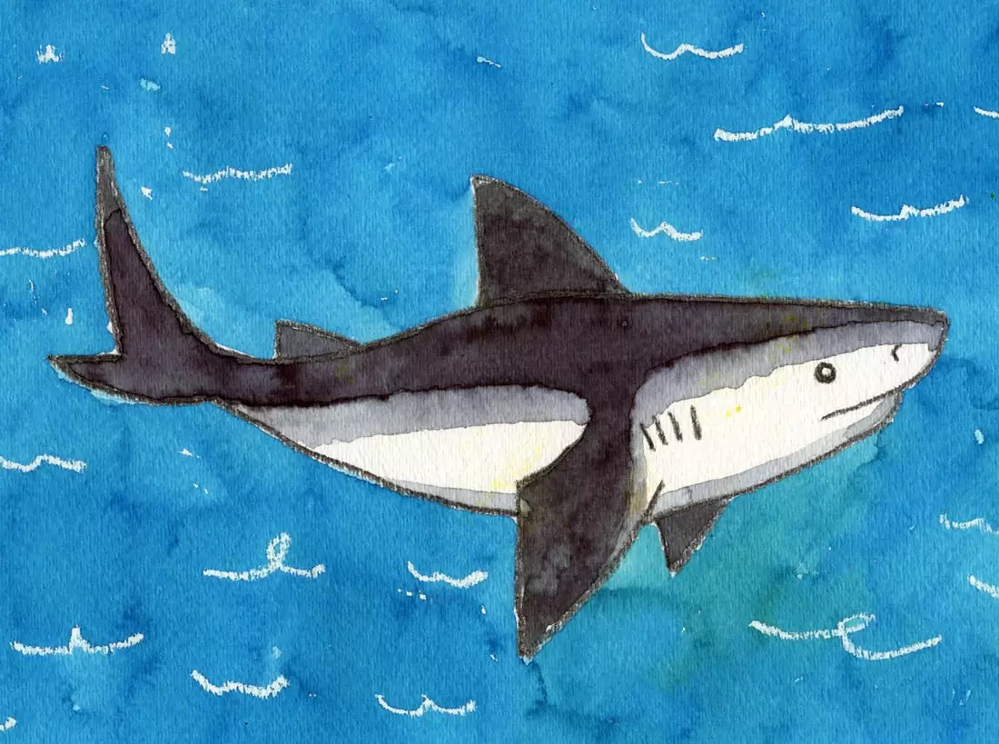 Shark Art Projects For Kids