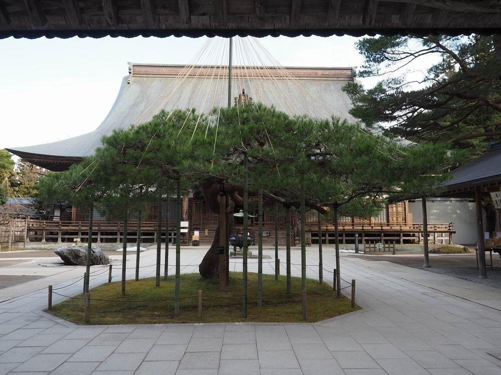 中尊寺本堂入り口門から中を覗く風景